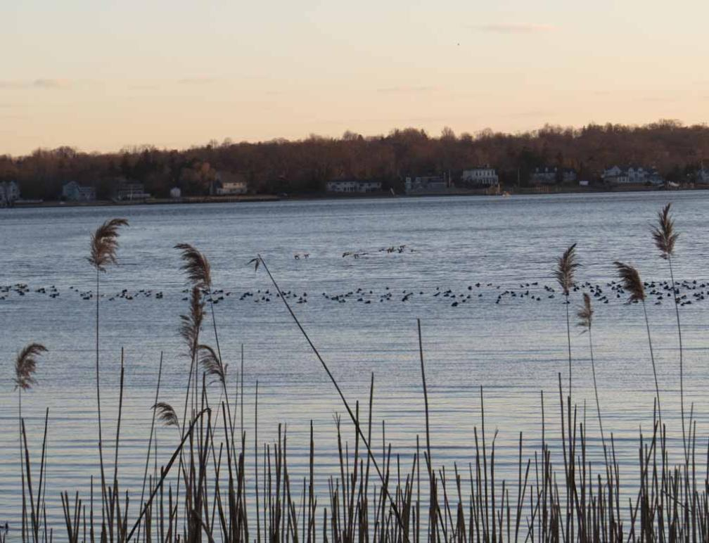 winter at sandy hook bay and navesink river