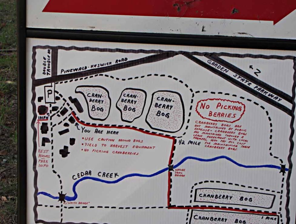 when we were touring on october 9 the cranberry bog 3 lower hooper bog was still dry i e not flooded yet except the perimeter ditch such that we