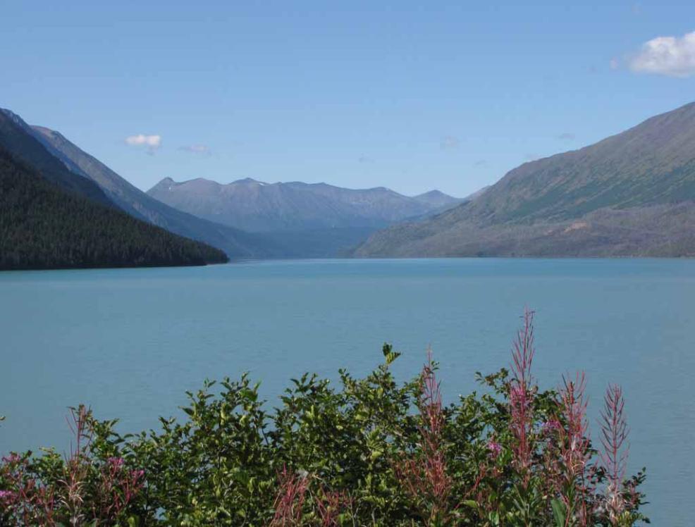 Go To See Alaska  Part 10 Kenai Peninsula