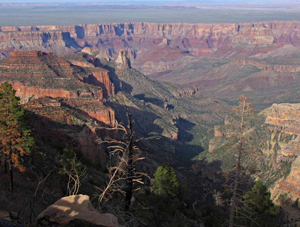 The Grand Canyon And Condor Part 5 Of 2010 Tour Of